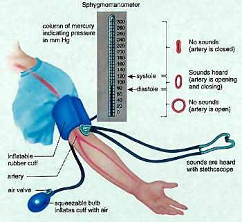 the causes of high blood pressure2