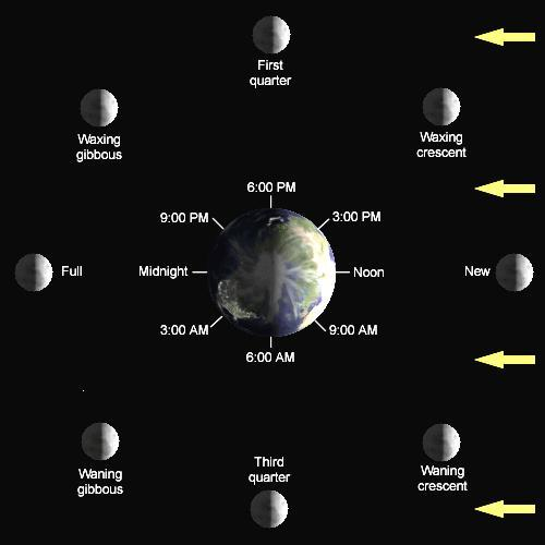 the phases of the Moon2